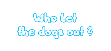 Headline_BOX_Kaibigan_Soul_Camp_Palawan_DOGS